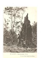 CPA AFRIQUE A.E.F. Une Termitière - Cartes Postales