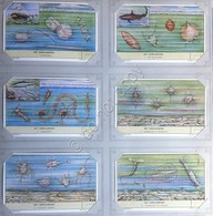 Figurine Liebig Olanda - S 1674 - Het Zeeplankton - Il Plancton Marino - 1957 - Liebig