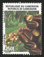 Cameroun Cameroon 1998 Coffee 250f Yv 888 Mi 1231 Neuf Mint - Kameroen (1960-...)