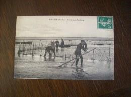 Carte Postale Ancienne De Gouville: Récolte De La Verdrière - France