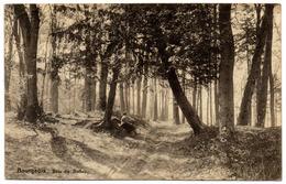 BOURGEOIS Rixensart - Bois De BELLOY Animée Promeneuse Allée / < 1930 - Rixensart