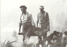 C 1505  LA BROUETTE PORTANTE 1981                          JOEL COUCHOURON - Agriculture