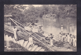 IDN1-31 BAMBOE TRANSPORT - Indonesia