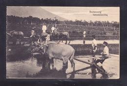 IDN1-40 BUITENZORG - Indonesia