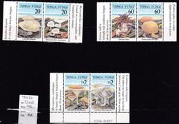 12 Timbres **(petit Et Grand Format Champignon Du Tonga Mushroom  Cogumelo  Setas - Champignons