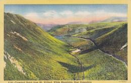 Crawford Notch From Mt Willard, WHite Mountains, New Hampshire USA (pk47314) - White Mountains