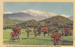 Mr Washington Snow Capped From Intervale, WHite Mountains, New Hampshire  USA (pk47317) - White Mountains