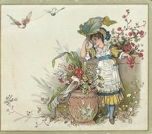 Image-carte Très Colorée Pour Présenter Ses Voeux Du  1 Janvier 1884 - Other