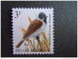 België Belgique Belgium 1991 Vogels Oiseaux Buzin Rietgors Bruant Des Roseaux Typopapier 2425Nov Yv 2425 MNH ** - 1985-.. Oiseaux (Buzin)