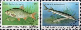 AZERBAIJAN 1993 - PESCI - 2 VALORI NUOVI CTO - Azerbaijan