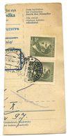 Czechoslovakia Bohemia & Moravia 1944 Parcel Card Velká Losenice / Gross Lossenitz - Covers & Documents