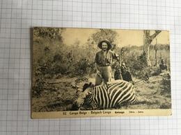18F - N52 Chasse Zèbre Katanga A Voyage Kabalo 1913 - Congo Belge - Autres