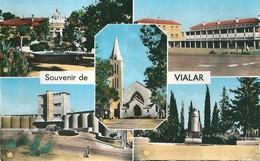 Algerie   VIALAR  Souvenir  De , ( Voir Verso Leger Pli   ) - Algeria