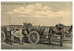 (800) Aden (now Un Yemen)- Very Old Postcard Number 26 - Billock & Camel Water Carts - Yemen