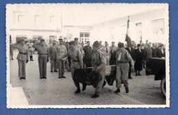 Sousse  --Carte Photo -- Enterrement D Un Soldat à Sousse  -- Oct 1951 - Tunisie