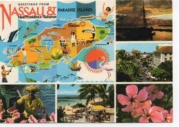 CPSM BAHAMAS NASSAU Et Paradise Island Diverses Vues Et Carte - Cartes Postales