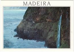 S. Vicente - Porto Do Moniz - Estrada Entre Duas Vilas, Madeira - Madeira