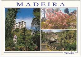 Funchal - Igreja Do Monte E Jardins Circundantes -  Madeira - Madeira