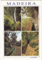 Madeira - Levadas / Water Channels - Madeira