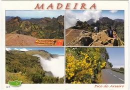 Pico Do Areeiro  1810 Mts - Madeira - Madeira