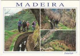 Passeios Pelo Campo, Interior - Madeira - Madeira