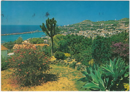 Funchal - Vista Oeste - Madeira - Madeira