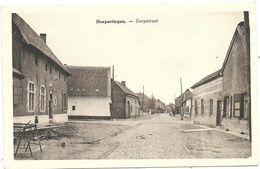 Hoepertingen NA1: Dorpstraat - Borgloon