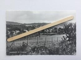 GENAPPE-TANGISSART  BT»PANORAMA «Édit Maison Michaux ,Tangissart (Véritable Photo Nº 23452 / 1166 ). - Genappe