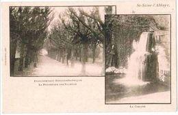 CPA SAINT SEINE L'ABBAYE - 2 Vues - La Promenade Des Tilleuls - La Cascade - Ed. Julien Rémond - Francia