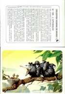 12938-image-844   Journal De Mickey   L'opossum  N ° 109 - Animaux