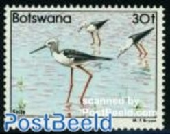 Botswana 1982 30T, Stamp Out Of Set, (Mint NH), Nature - Birds - Botswana (1966-...)