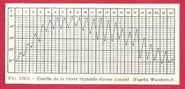 Courbe De La Fièvre Typhoïde (forme Simple), D'après Wunderlich,  Larousse Médical 1929 - Other