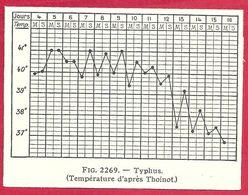 Typhus, Température, D'après Thoinot, Larousse Médical 1929 - Other