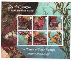 B23 South Georgia Mini-sheet Marine Life MNH 2011 - South Georgia