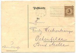 Germany 1924 Postcard Oldenburg - Verband Der Rhodeländer-Züchtervereine - Germany