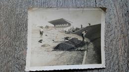 Photo Originale Construction Vélodrome De La Roche Sur Yon 1935 Cyclisme Vélo - Ciclismo