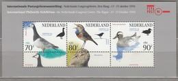 BIRDS NETHERLANDS 1994 Sheet MNH (**) #22666 - Other