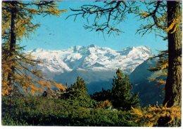 Gressoney. (AO). Veduta Del Monte Rosa. VG. - Italia