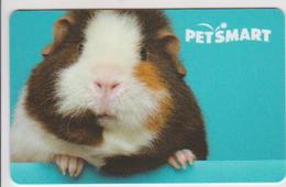 GIFT CARD - USA - PET SMART-SV1604548 - Gift Cards