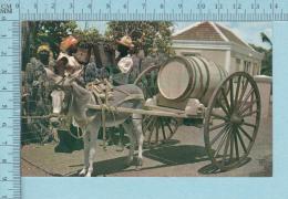 Curacao N. A. -  Animated Water Vendor-  Postcard,  Carte Postale - Curaçao