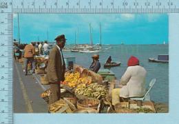 Curacao N. A. -  Animated Out Inland Produce -  Postcard,  Carte Postale - Curaçao