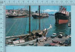 Curacao N. A. -  Animated Harbor -  Postcard,  Carte Postale - Curaçao