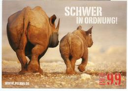 Hard To Manage ! Difficile à Gérer ! Le Bébé Hippopotame,  Mint Uncirculated Postcard - Hippopotames