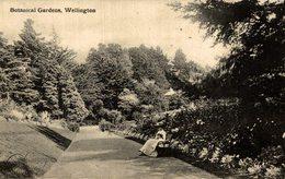 BOTANICAL GARDENS, WELLINGTON  -   NEW ZEALAND POST CARD - Nueva Zelanda