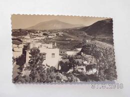 Icod. - Vista Parcial. - Tenerife