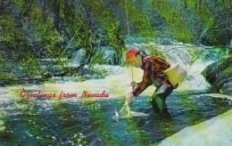 Greetings From Nevada Fishing Scene