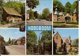 Groeten Uit Hoogboom - Kapellen