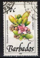 BARBADOS - 1989 - PIANTA SELVATICA: SEASIDE SAMPHIRE - USATO - Barbados (1966-...)
