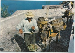 Greece, Snapshots In Summer, Unused Postcard [21302] - Greece