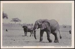 Postal Moçambique - Parque Nacional Da Gorongosa - Elefante, Bufalo - Elephant, Buffalo - National Park - CPA - Postcard - Mozambique